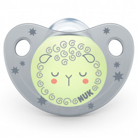 Nuk Luminous silicone pacifier 0-6m NIGHT/DAY with sterilization box Grey