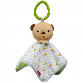 Fisher Price Peek-A-Boo Plush Bear
