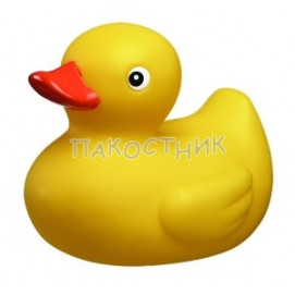 Playgro Duck for bath Playgro