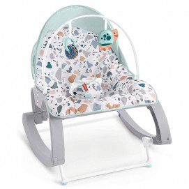 Fisher Price Deluxe Infant-to-Toddler Rocker GMD21